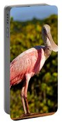 Spoonbill Portable Battery Charger by David Lee Thompson