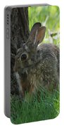 Spring Rabbit Portable Battery Charger