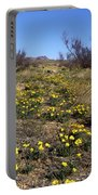 Spring Surprise Franklin Mountains Portable Battery Charger