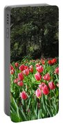 Spring Tulips 1 Vertical Portable Battery Charger