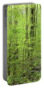Spring Woods Portable Battery Charger