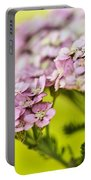 Spring's Delight Portable Battery Charger