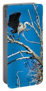 Springtime Nesting In Colorado Portable Battery Charger