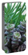 Squarely Purple Succulent Crassula Baby Necklace Portable Battery Charger