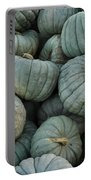 Squash Pile Portable Battery Charger