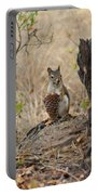 Squirrel And Cone Portable Battery Charger