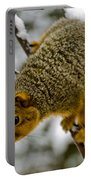 Squirrel Dive Bomber Portable Battery Charger
