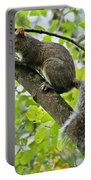Squirrel IIi Portable Battery Charger