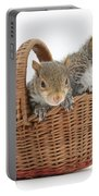 Squirrels In A Basket Portable Battery Charger by Mark Taylor