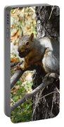 Squirrling Away Portable Battery Charger