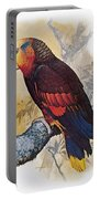 St Vincent Amazon Parrot Portable Battery Charger