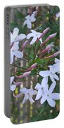 Star Jasmin In Bloom Portable Battery Charger