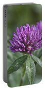 Starfire Clover - Trifolium Pratense Portable Battery Charger