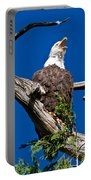 Squawking Alaskan Eagle Portable Battery Charger