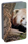 Stealthy Red Panda Portable Battery Charger