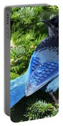 Stellers Jay 2 Portable Battery Charger