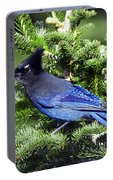 Stellers Jay Portable Battery Charger