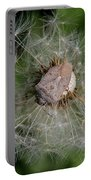 Stink Bug On Dandelion Seed Head Portable Battery Charger
