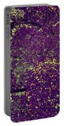 Stone Face At Hossa With Stone Age Paintings Portable Battery Charger