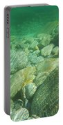 Stones Under The Water Portable Battery Charger
