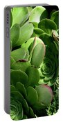 Strand Succulent Portable Battery Charger