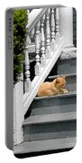 Stratford Cat Nap Portable Battery Charger