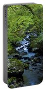 Stream Flowing Through A Forest Portable Battery Charger