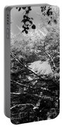 Streched Trees In Black And White Portable Battery Charger