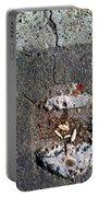 Streets Of Coronado Island  7 Portable Battery Charger