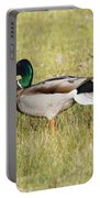 Stretching Mallard Portable Battery Charger