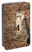 Strike A Squirrelly Pose Portable Battery Charger