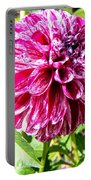 Striped Dahlia Portable Battery Charger