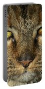Stubbs 1 Portable Battery Charger