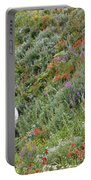Subalpine Wildflowers Portable Battery Charger