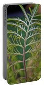 Sumac Frond Portable Battery Charger