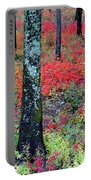 Sumac Slope And Lichen Covered Tree Portable Battery Charger