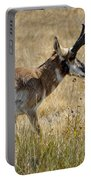 Summer Pronghorn Rain Portable Battery Charger