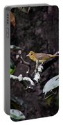 Summer Tanager Lady Portable Battery Charger