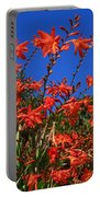 Montbretia, Summer Wildflowers Portable Battery Charger