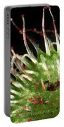 Sundew Eating A Fly Portable Battery Charger
