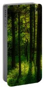 Sunlight In Forest Portable Battery Charger