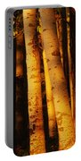 Sunlight On Aspen Trees, Twin Falls Portable Battery Charger