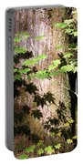 Sunlight Reaching The Forest Floor Portable Battery Charger