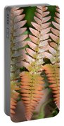 Sunlit Red Fern Portable Battery Charger