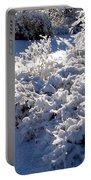 Sunlit Snowy Sanctuary Portable Battery Charger