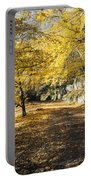 Sunny Day In The Autumn Park Portable Battery Charger