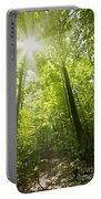 Sunny Forest Path Portable Battery Charger