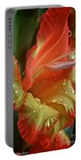 Sunny Glads Portable Battery Charger by Susan Herber