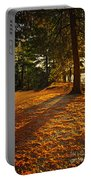 Sunset In Woods At Lake Shore Portable Battery Charger