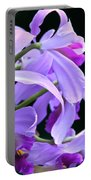 Super Orchid Portable Battery Charger